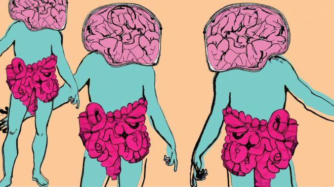 Tại sao vi khuẩn đường ruột có thể làm thay đổi tâm trạng của chúng ta? 1