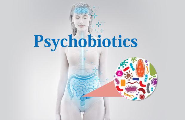 """Sử dụng các """"Probiotic tâm trạng"""" (còn gọi là Psychobiotics) 1"""
