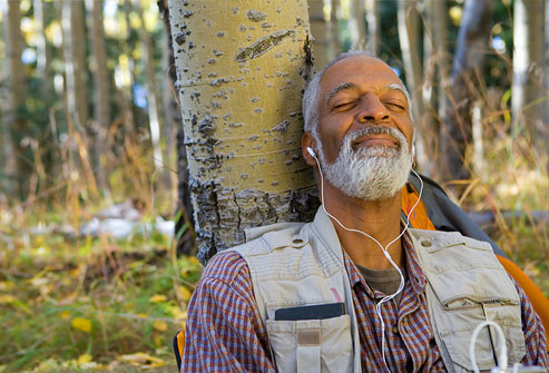 Người đàn ông ngồi trong rừng nghe nhạc