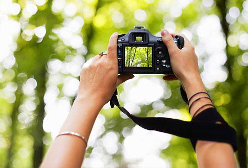 Người phụ nữ chụp ảnh rừng trên máy ảnh kỹ thuật số