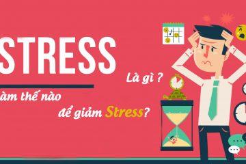 Stress là gì? Làm thế nào để giảm stress?