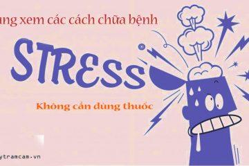 Tổng hợp cách chữa bệnh stress không cần dùng thuốc