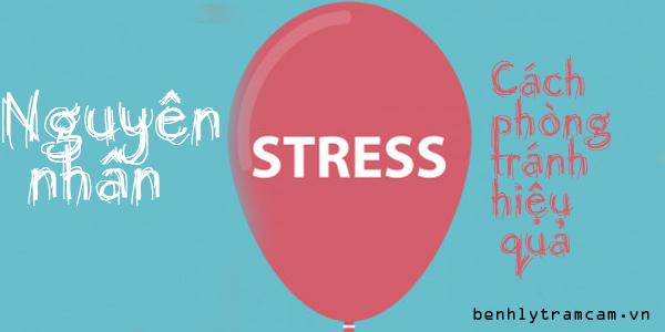 Nguyên nhân stress là gì Cách phòng tránh hiệu quả