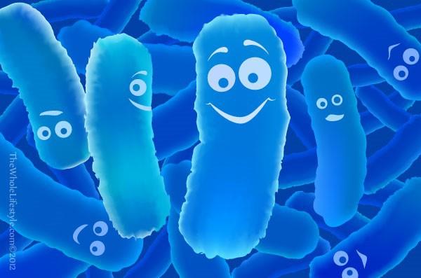 Probiotic có thể giúp ngăn ngừa trầm cảm 1