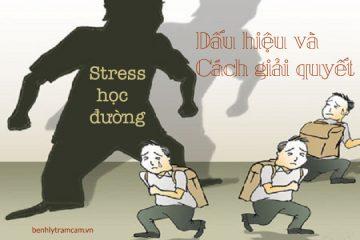 Stress học đường – Dấu hiệu và cách giải quyết