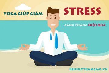 Yoga giúp giảm stress căng thẳng hiệu quả