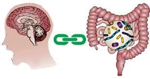 Stress và các bệnh đường tiêu hóa